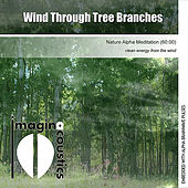 Play & Download Wind Through Tree Branches (Nature Alpha Meditation) by Imaginacoustics | Napster