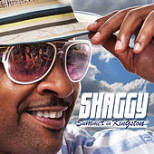 Play & Download Summer in Kingston by Shaggy | Napster