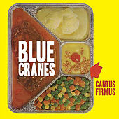 Cantus Firmus by Blue Cranes