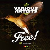 Free Riddim Selection von Various Artists