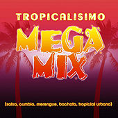 Play & Download Tropicalisimo Mega Mix by Various Artists | Napster