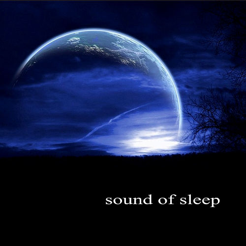 Sound of Sleep by Various Artists
