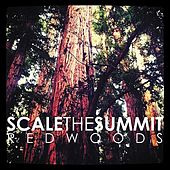Redwoods by Scale the Summit