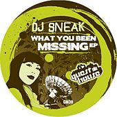 Play & Download What You Been Missing by DJ Sneak | Napster