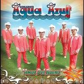 Play & Download Amor Del Bueno by Conjunto Agua Azul (1) | Napster