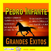 Play & Download Grandes Exitos by Pedro Infante | Napster