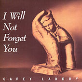 Play & Download I Will Not Forget You by Carey Landry | Napster