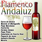 Play & Download Flamenco Andaluz by Various Artists | Napster