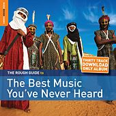 Rough Guide: The Best Music You've Never Heard by Various Artists