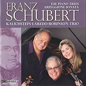 Play & Download Franz Schubert: The Piano Trios and Arpeggione Sonata by Various Artists | Napster