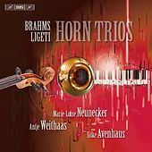 Play & Download Brahms - Ligeti: Horn Trios by Various Artists | Napster