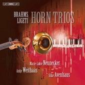 Brahms - Ligeti: Horn Trios by Various Artists