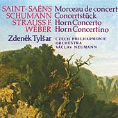 Play & Download Weber, Strauss, Saint-Saëns, Schumann: Concertino in E minor, Concerto in C minor, Morceau de concert, Concerto Piece by Zdeněk Tylšar | Napster