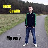 My Way by Meik Gawlik
