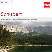 Play & Download Essential Schubert by Various Artists | Napster