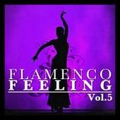 Flamenco Feeling Vol. 5 by Various Artists