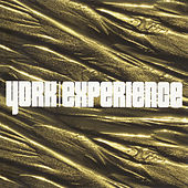 Experience by York
