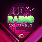 Play & Download Juicy Radio Volume 2 by Various Artists | Napster