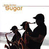Play & Download Sugar by Andy Snitzer | Napster