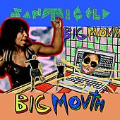 Big Mouth by Santigold
