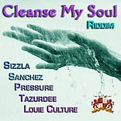 Cleanse My Soul Riddim by Various Artists