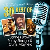 The Unforgettable Voices: 30 Best of James Brown, Percy Sledge & Curtis Mayfield von Various Artists