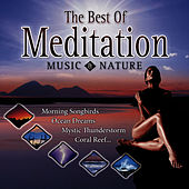 Play & Download Best of Meditation with Music & Nature by Dave Miller | Napster