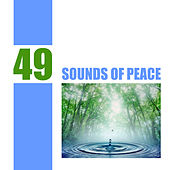 Play & Download 49 Sounds of Peace by Various Artists | Napster