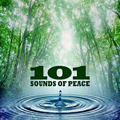 Play & Download 101 Sounds of Peace by Various Artists | Napster
