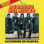 Play & Download Cayendose De Madura by Los Audaces Del Ritmo | Napster
