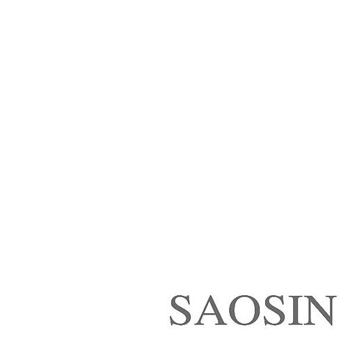 Translating The Name by Saosin
