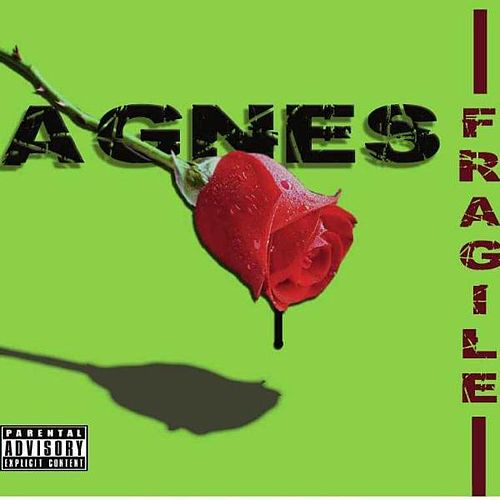 Play & Download Fragile by Agnes | Napster