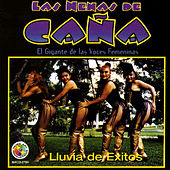 Play & Download Lluvia De Exitos by Las Nenas De Cana | Napster