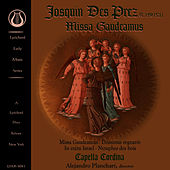 Play & Download Josquin Des Prez: Missa Gaudeamus by Capella Cordina | Napster