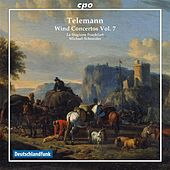 Play & Download Telemann: Wind Concertos, Vol. 7 by Various Artists | Napster