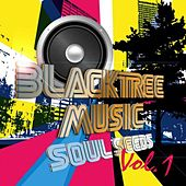 Blacktree Music Presents: Soul Seeds, Vol. One by Various Artists