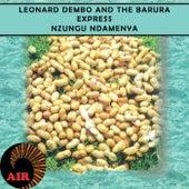 Nzungu ndamenya by Various Artists