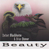 Beauty by Delbert Blackhorse