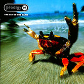 Play & Download Fat Of The Land by The Prodigy | Napster