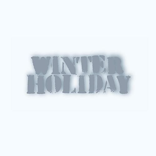 Winter Holiday by Various Artists