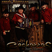 Play & Download Abran Botellas by Los Cachorros de Juan Villarreal | Napster