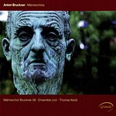 Play & Download Bruckner: Männerchöre by Various Artists | Napster