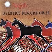 Najah by Delbert Blackhorse