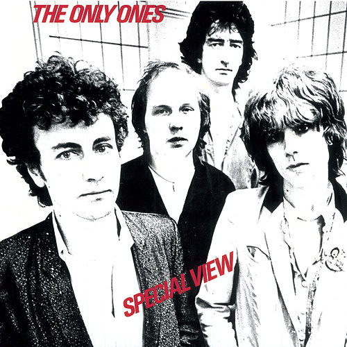 Play & Download Special View by The Only Ones | Napster