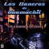 Play & Download Voy a Tirarme a los Vicios by Los Llaneros De Guamuchil | Napster