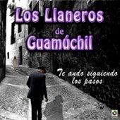 Play & Download Te Ando Siguiendo los Pasos by Los Llaneros De Guamuchil | Napster