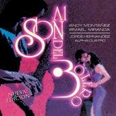 Al Son del Bolero by Various Artists