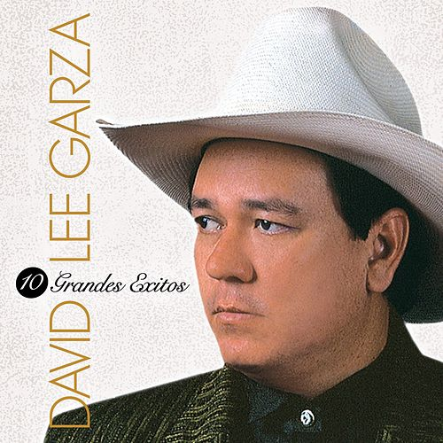 Play & Download 10 Grandes Exitos by David Lee Garza | Napster