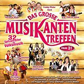 Play & Download Das große Musikantentreffen - Folge 31 by Various Artists | Napster