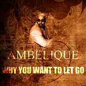 Play & Download Why You Want To Let Go by Ambelique | Napster